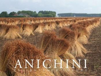 Anichini Flax Linen E-Gfit Card