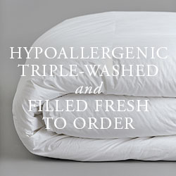ANICHINI European Goose Down: Hypoallergenic, Triple-Washed, and Filled Fresh To Order